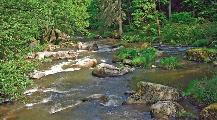 Waldaist-Naarn - Naturschauspiel