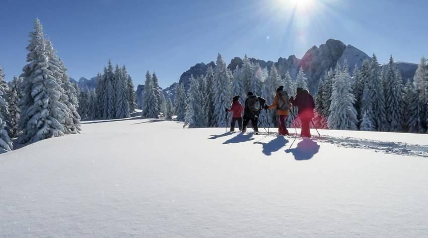 Schneeschuhwanderung Bibereck - Torfmoos - Naturschauspiel