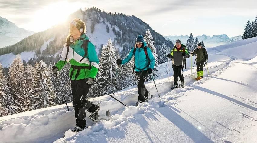 Mit Schneeschuhen durch den Winterwald - Naturschauspiel