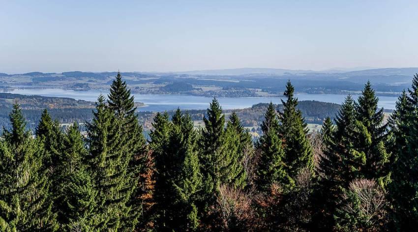 Böhmerwald - Naturschauspiel