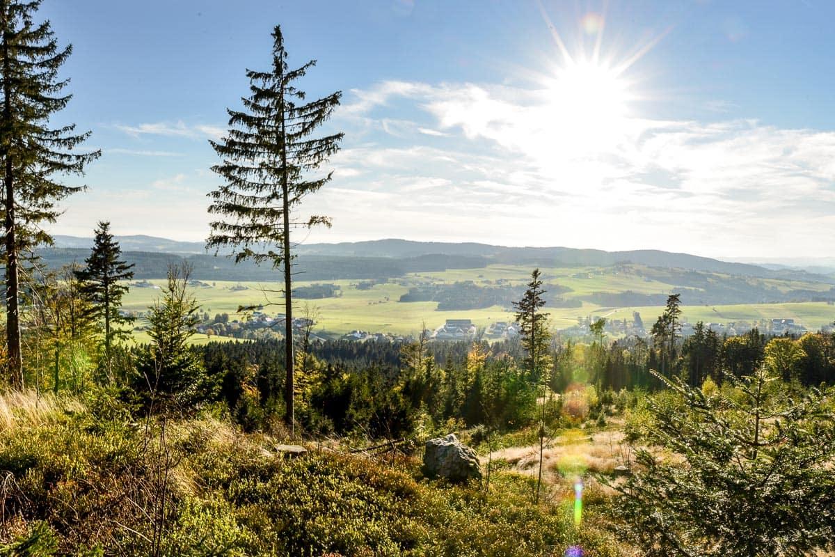 Böhmer Wald